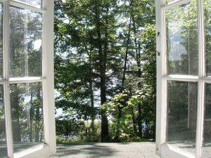 window.5